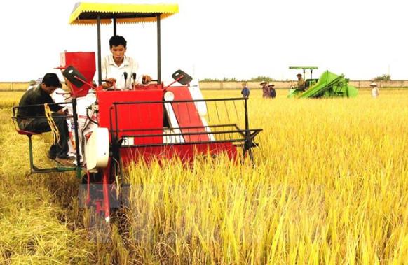 ngành kinh tế nông nghiệp là gì, ra trường làm gì