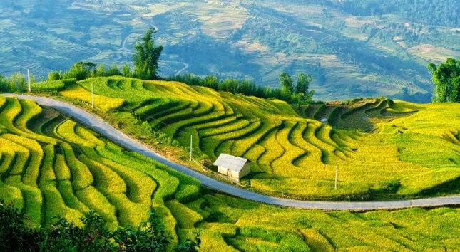 Sapa Lao Cai province
