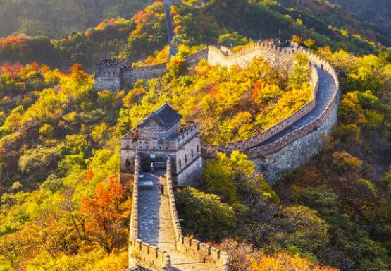 ngành Ngông ngữ Trung quốc học gì