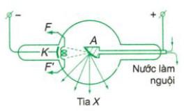 cách tạo ra tia X tia Rơn-ghen