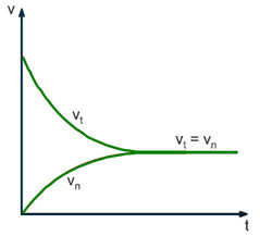 đồ thị biểu diễn tốc độ phản ứng thuận nghịch