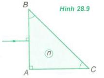 hình 28.9 bài 5 trang 179 sgk vật lý 11
