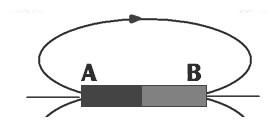 câu c5 trang 64 sgk vật lý 9