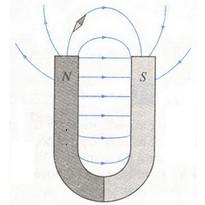 lời giải câu c4 trang 64 sgk vật lý 9