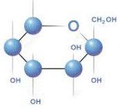 cấu tạo phân tử của fructozo mạch vòng
