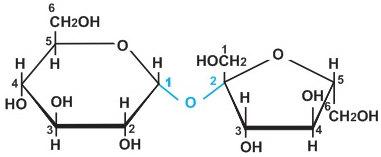 công thức cấu tạo của saccarozo