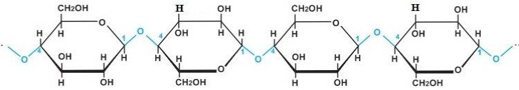 cấu tạo phân tử xenlulozo