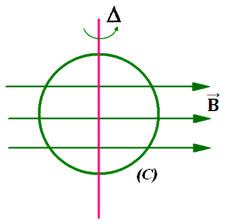hình 24.4 bài 6 trang 152 sgk vật lý 11